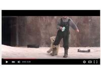 超萌抱大腿 雙胞胎北極熊寶寶「圍攻」飼養員求抱抱