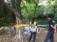 台中228公園今早傳自焚 大排水溝旁驚見1男焦屍
