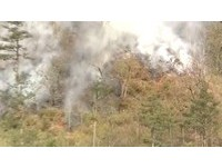 台中「火燒山」燒到武陵農場茶園 員工急救火