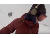 她聽歌「自拍滑雪」炫技 巨熊怒吼...大飛撲沿路追殺