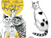 伊藤潤二也是「貓奴」!漫畫家們為福島災區流浪貓募款