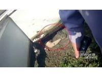 轎車撞電桿翻進田裡 女駕駛露出一隻手…為了趕蚊子