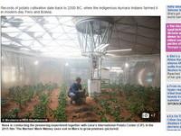 《絕地救援》翻版?火星上種馬鈴薯 NASA計畫真要做