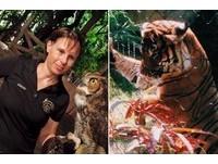 「她常跟老虎說話...」 女飼育員表演前餵馬來虎慘死