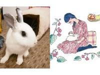 我家兔子就是靈感來源!療癒度滿點的女孩與兔兔的插畫