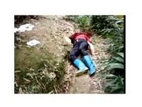 採筍被誤認成「野豬」 農婦左肩中槍當場倒地死亡