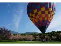 搭熱氣球賞花!台東鹿鳴飯店全國首創 高空俯瞰桃花林