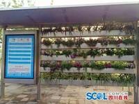 四川首座「園林式」公車站 蘭花盆栽2天就被偷光光!