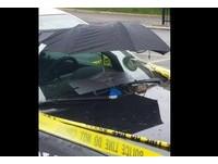 鴿子媽媽窩警車擋風玻璃築巢 暖警自製「雨傘遮雨棚」