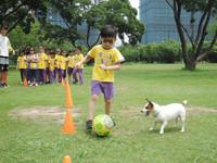 台中小學有「狗語課」! 「五字訣」學跟汪星人相處