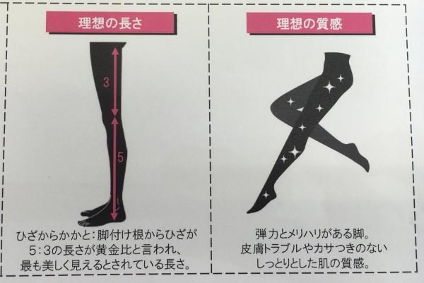 ▼大腿和小腿的比例是3比5,腿部且要光滑,才能算是「极品美腿」.