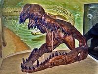恐鱷「戴諾蘇克斯」參見! 上岸獵食讓暴龍成了笑話