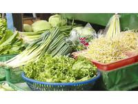 買到搶收蔬菜恐有農藥殘留 颱風天存糧專家這8點提醒