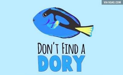 看完《海底總動員2》好想養多莉?一張圖解釋別這麼做