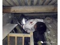 浙江小賊失風被「近千人」圍堵 哭求:放我一條生路