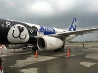 復興接手清邁、福岡航線 威航:可全額退費