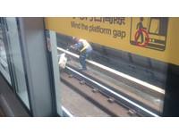 鳥困軌道 石牌捷運站人員跳下月台展開「9秒救援」