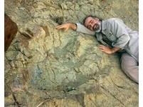 1.2m恐龍足跡現蹤玻利維亞 考古學家:南美最大腳印
