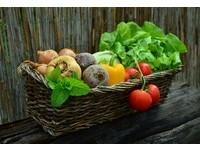 生吃還是熟食好? 6類食物烹煮後「營養大打折」