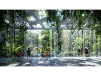 杜拜蓋世界第一個擁有自己「熱帶雨林」的旅館