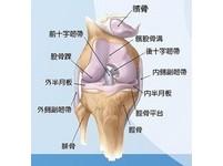 「新月形微創人工膝關節手術」退化性關節患者福音