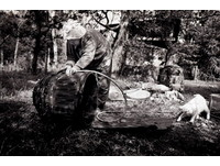 白貓福丸時時刻刻跟在老祖母美佐緒身邊,不論吃飯、睡覺,工作,甚至洗澡都互相陪伴。有時候牠的動作跟老祖母非常相似,這些趣味鏡頭,被孫女美代子捕捉下來(圖/Miyoko IHARA)