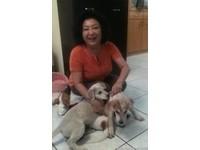 周丹薇自製抗癌料理找回健康 Ma媽媽赴上海求醫