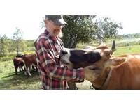 「覺得很虛偽」不願接生後送去死 畜牧場變動物庇護所