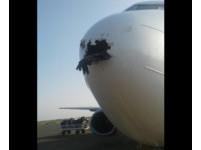 鳥擊機鼻撞出「黑洞」 波音737「外掛」帶血屍體降落