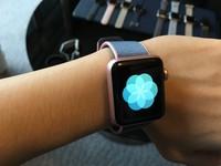 俄駭客試圖竊聽 英內閣下令禁戴Apple Watch開會