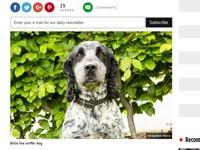 英警犬嗅覺超靈敏 聞精液揪性侵色魔