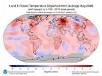 持續破紀錄!137年來最熱8月 鄭明典:不是聖嬰現象能解