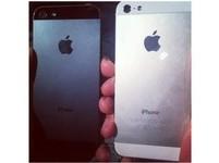 iPhone賣2.4萬大麥克要150元 澳洲物價嚇人