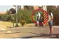 員警切換「綠燈秒變紅燈!」 駕駛急煞險遭卡車追撞