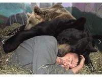 暖心夫妻當孤兒熊熊們的爸媽 陪吃陪玩...還要陪睡!