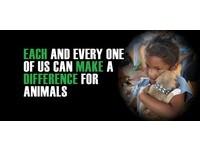 10/4「世界動物日」:世上還有更多單純生命需要被關注