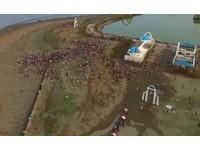 超震撼!空拍南寮漁港抓寶實況 網驚呼「根本螞蟻搬家」