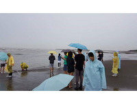 中原師生冒雨勘察大潭藻礁 呼籲停設天然氣接收站