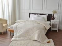 趁換季搶特賣冬季寢具 雙人羊毛被2000元有找