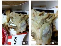 5歲童嘔吐送醫!美速食店炸雞一顆顆「蟲卵」蠕動成蛆