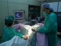 子宮肌瘤「生長位置比大小重要」 長在黏膜層最嚴重