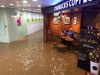 香港「星巴克老伯」水中看報爆紅 BBC:媲美台灣包子嬸