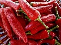 吃辣椒真的能減肥? 營養師解析這樣說...