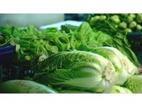政院下令抓哄抬菜價菜蟲 法務部指示高檢署統籌嚴辦