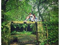 人氣偶像劇「妹妹」拍攝地!遍佈翠綠的夢幻遺世小森林