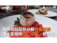 神奇菇菇杯分解有毒物質! 大家揪團「吃垃圾救地球」