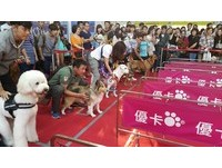 台北寵物展登場 得易Ponta APP 5點換門票!