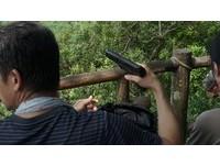 柴山獼猴太兇?男坐涼亭...持空氣槍射擊 網掀口水戰
