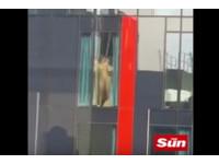 「老漢推車」奶貼落地窗 對面上班族爽嗨:哈!哈!哈