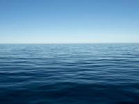 來自太平洋下馬里亞納大海溝的「深」音 比你想像精彩